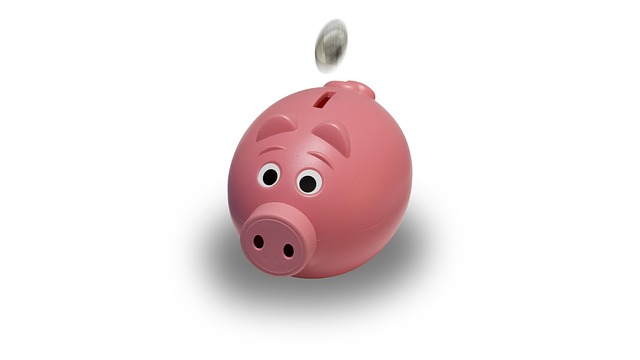 Piggy bank 1493903513 Gamification Element Investment